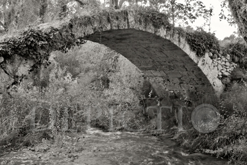 Roman Bridge near Salernes, Provence, 2004