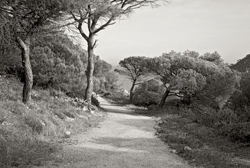 "Cap Taillat, Provence, 2008<br /> (From the series: ""Chemins millénaires"")"
