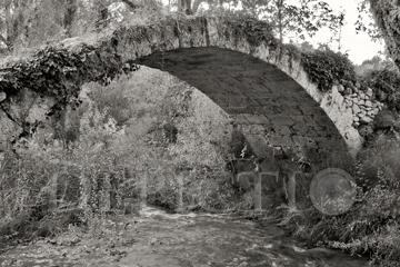 Roman Bridge near Salernes, Provence, 2004